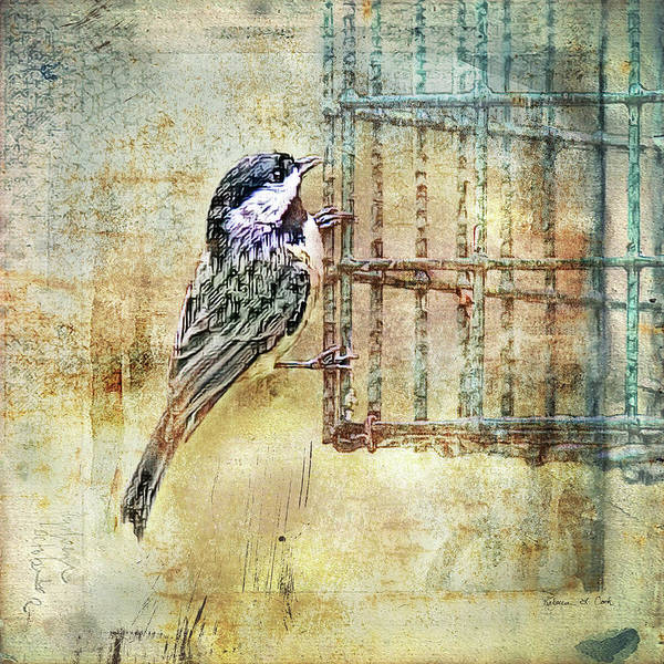 Photograph - Black Capped Chickadee by Bellesouth Studio