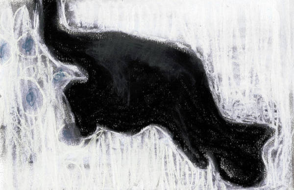 Drawing - Black Cat In The Snow by Artist Dot