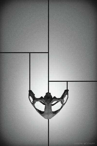 Figurative Abstract Photograph - Black Chalice - Abstract Geometric Bone Art by Joseph Westrupp