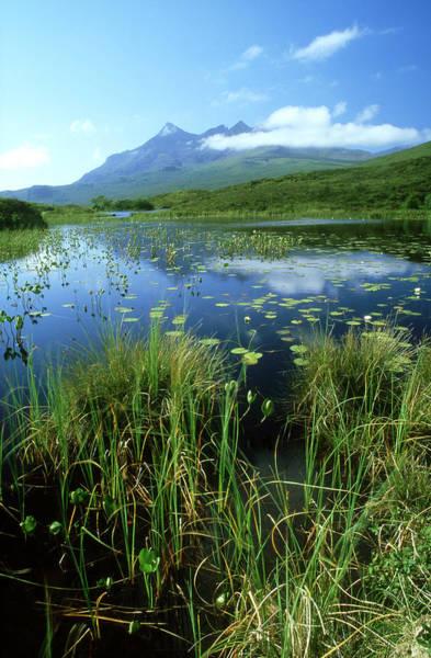 Freshwater Photograph - Black Cuillin From Loch Nan Eilean by Iain Sarjeant