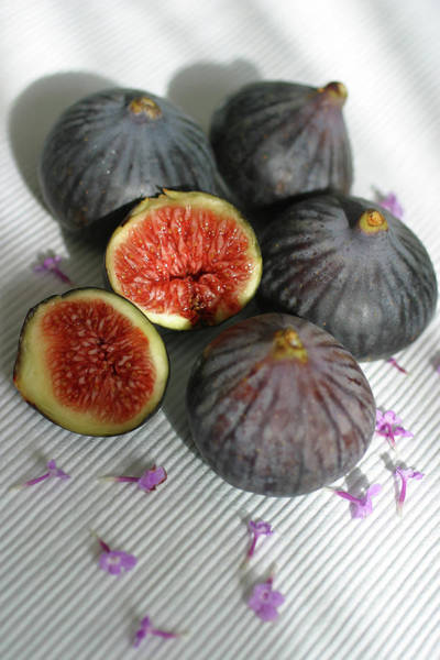 Wall Art - Photograph - Black Figs by Lucgillet