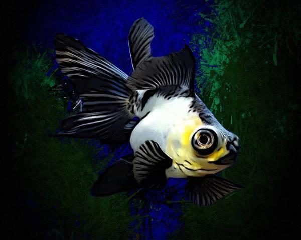 Digital Art - Black Fin Goldfish  by Scott Wallace Digital Designs