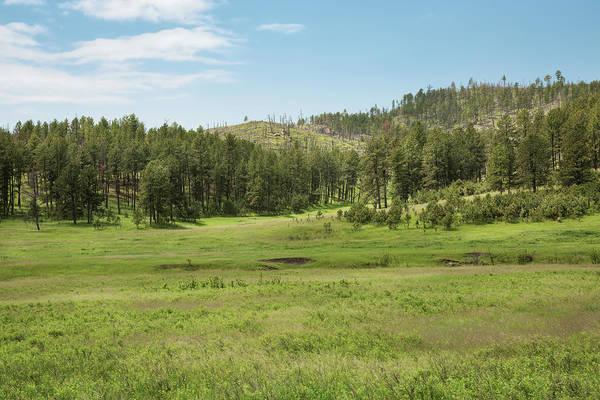 Photograph - Black Hills Range Land by John M Bailey