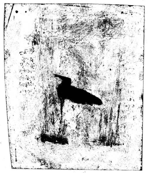 Drawing - Black Ivory Actual 1b23z by Artist Dot