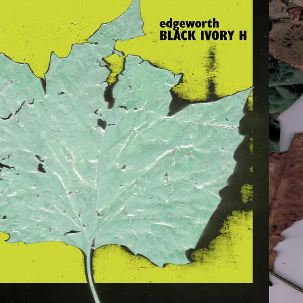 Digital Art - Black Ivory H Cover by Artist Dot