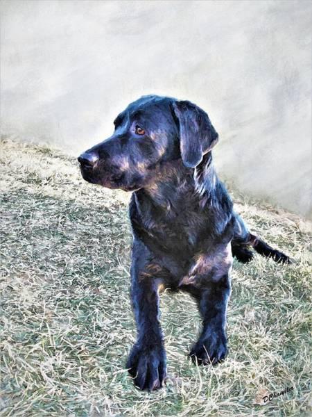 Painting - Black Labrador Retriever - Daisy by Diane Chandler