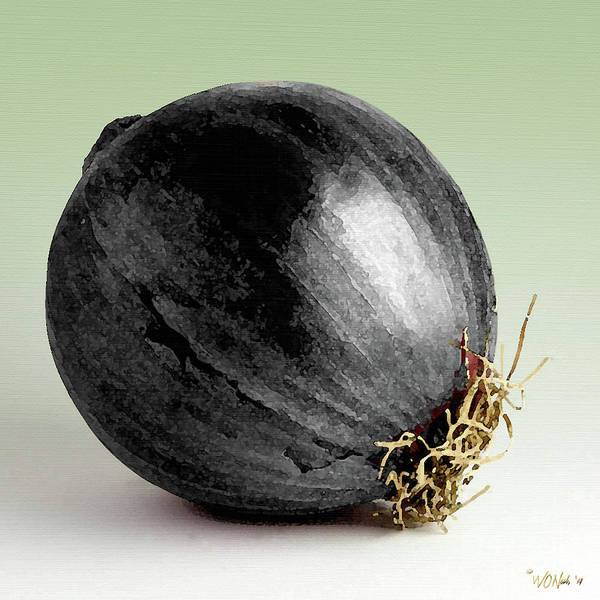 Digital Art - Black Onion by Walter Neal