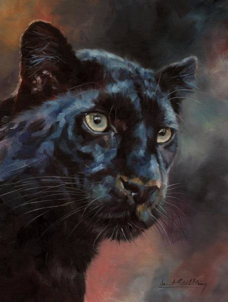 Painting - Black Panther 1 by David Stribbling