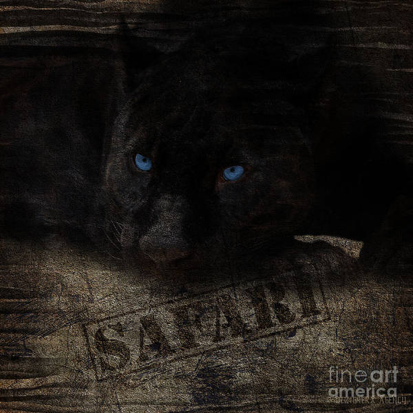 Black Panther Mixed Media - Black Panther Safari Collection by Dezigners Agency