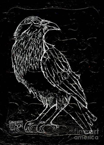 Raven Drawing - Black Raven by Genevieve Esson
