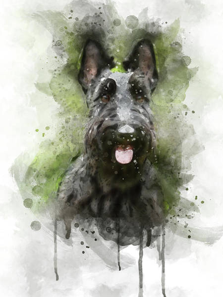 Terrier Digital Art - Black Scottish Terrier by Aged Pixel