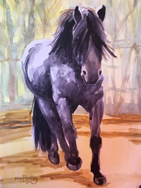 Painting - Black Stallion by Mimi Boothby