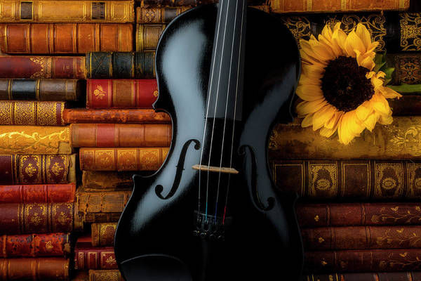 Wall Art - Photograph - Black Violin And Old Books by Garry Gay