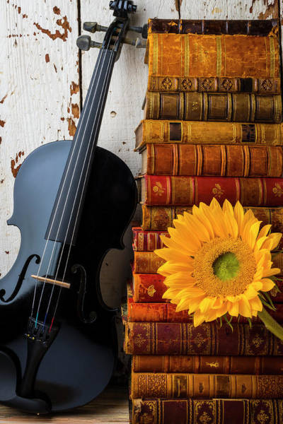 Wall Art - Photograph - Black Violin And Stack Of Books by Garry Gay
