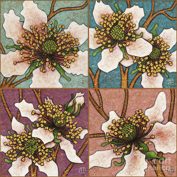 Painting - Blackberry Blossom Set 1 Original Colors by Amy E Fraser