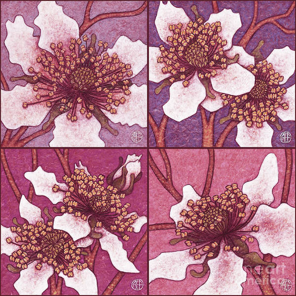 Painting - Blackberry Blossom Set 3 Pinks by Amy E Fraser