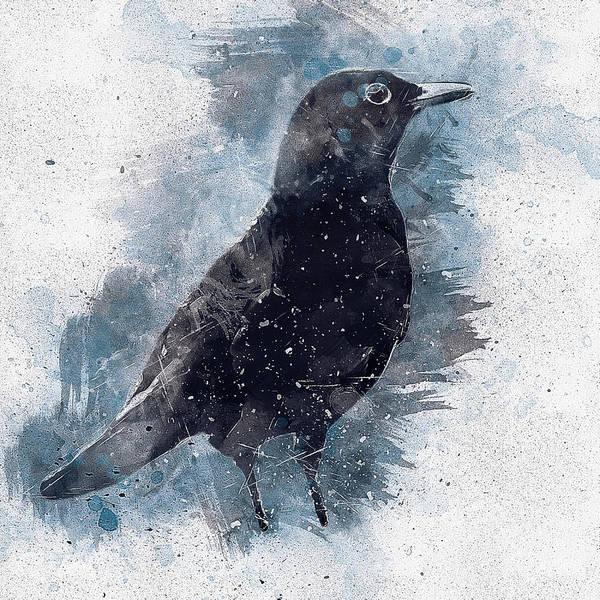 Wall Art - Digital Art - Blackbird Grunge Edition by Matthias Hauser