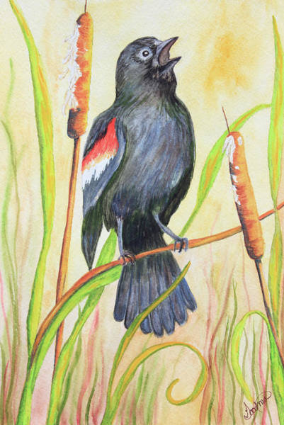 Bullrush Painting - Blackbird In The Bullrushes by Patricia Goodman