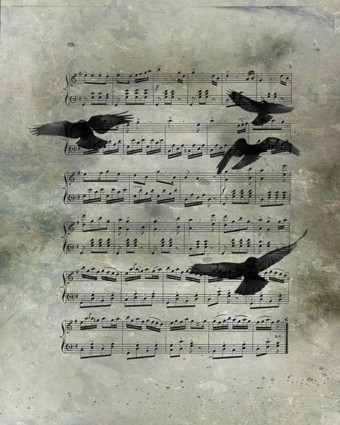 Wall Art - Photograph - Blackbirds In The Music  by Gothicrow Images