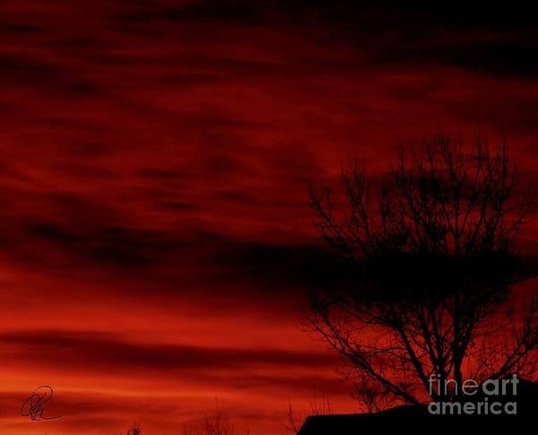 Photograph - Blackened Silhouettes by Ann E Robson