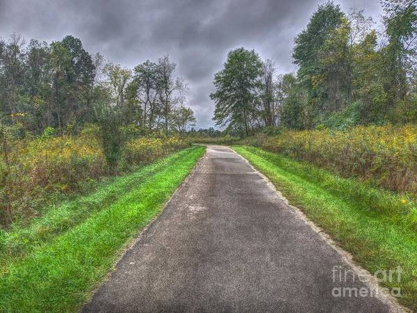 Photograph - Blacklick Woods Pathway by Jeremy Lankford