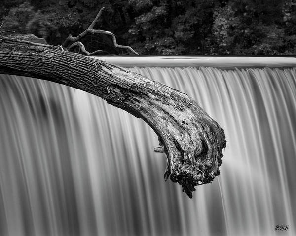 Photograph - Blackstone River Xi Bw by David Gordon