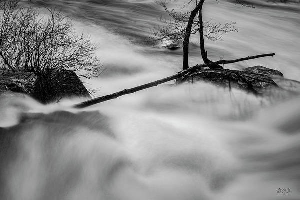 Photograph - Blackstone River Xxxi Bw by David Gordon