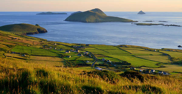In The Grass Photograph - Blasket Islands,co.kerry,ireland by Through The Eye Of A Lens Photography Has Always Been My Pas