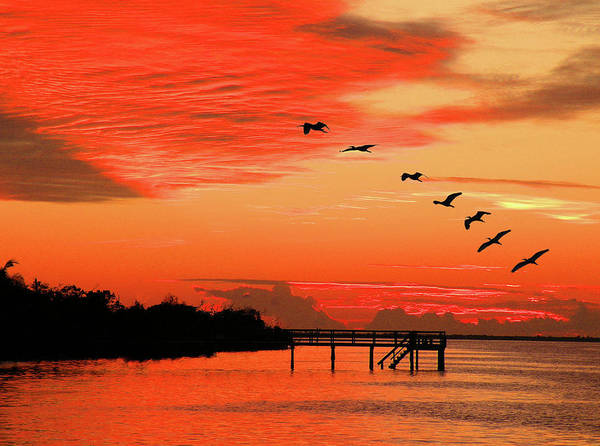 Photograph - Blazing Sunset by Rosalie Scanlon