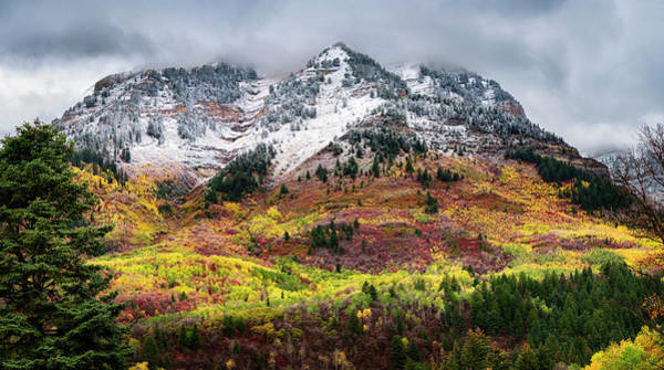 Photograph - Blending Fall And  Winter by Michael Ash