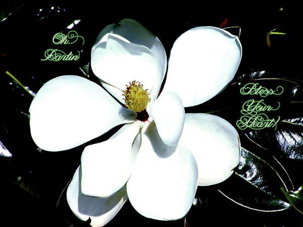 Fleur Digital Art - Bless Your Heart Greeting Card by Linda Cox