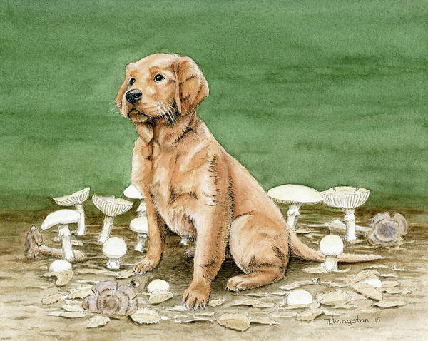 Golden Retriever Mixed Media - Bliss And The Destroying Angels by Timothy Livingston