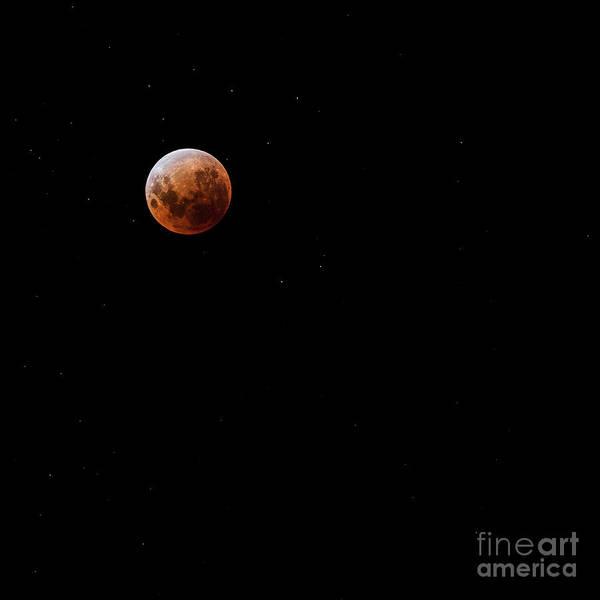 Blood Moon Wall Art - Photograph - Blood Moon by Andrew Paranavitana