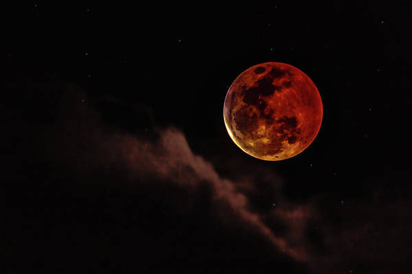 Photograph - Blood Moon Rising by John Bauer