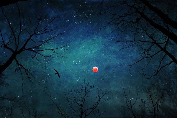 Photograph - Blood Moon Through Trees by Dirk Wuestenhagen