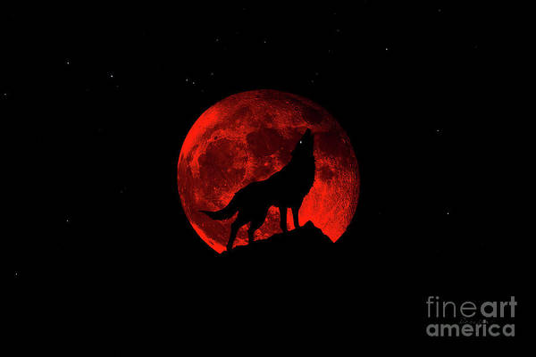 Photograph - Blood Red Wolf Supermoon Eclipse 873k by Ricardos Creations