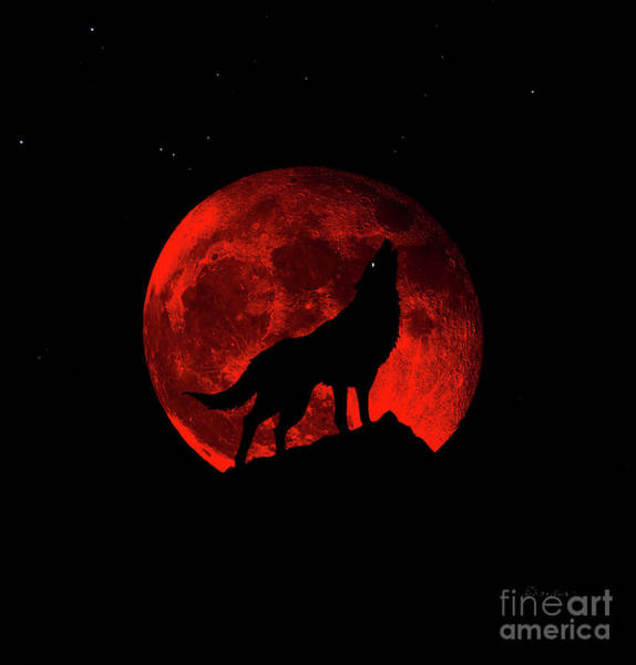 Photograph - Blood Red Wolf Supermoon Eclipse 873l by Ricardos Creations