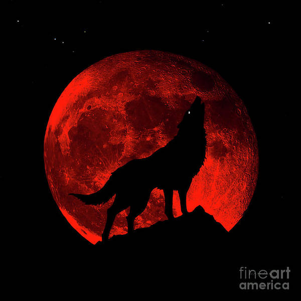Photograph - Blood Red Wolf Supermoon Eclipse 873m by Ricardos Creations