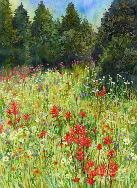 Pasture Wall Art - Painting - Blooming Field by Hailey E Herrera