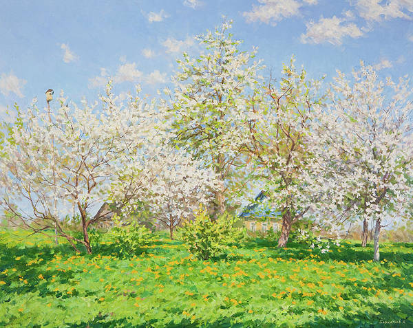 Russian Impressionism Wall Art - Painting - Blooming Garden by Igor Barkhatkov