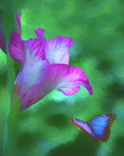 Photograph - Blossom And Butterfly by Cathy Kovarik