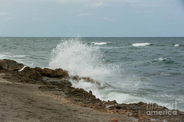 Photograph - Blowing Rocks by Sabrina L Ryan