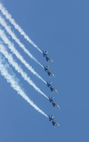 Photograph - Blue Angels Dive by Wes and Dotty Weber