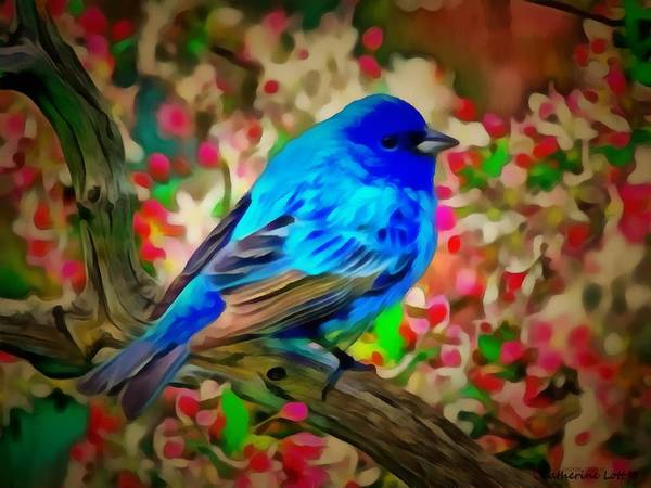 Painting - Blue Bird by Catherine Lott