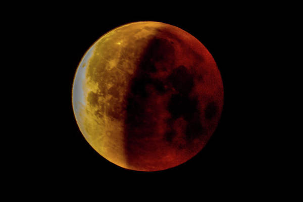 Photograph - Eclipsed Blue Blood Moon by Jack Peterson