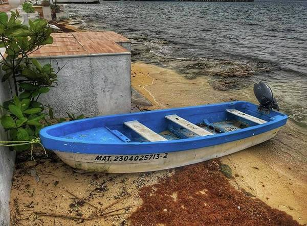 Photograph - Blue Boat by Laura Hedien