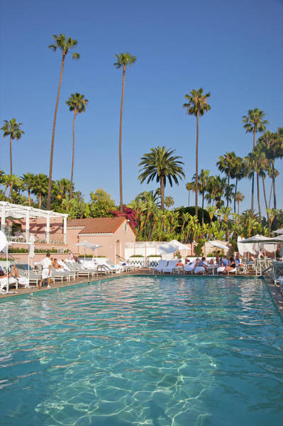 Beverly Hills Hotel Photograph - Blue-bottomed Pool Beneath Palm Trees by Barry Winiker