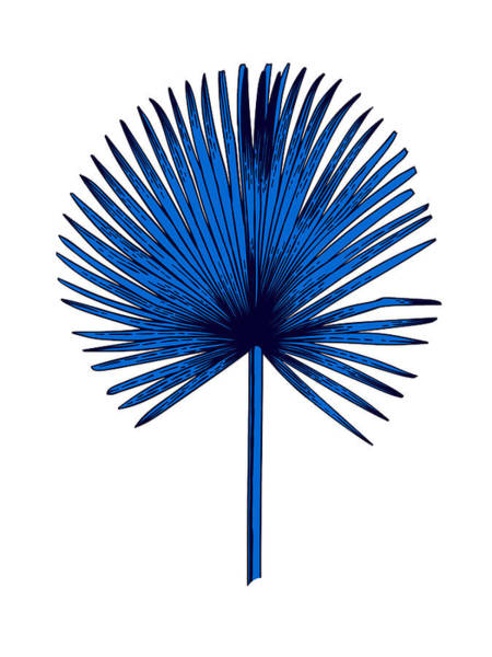 Wall Art - Mixed Media - Blue Chamaerops Leaf by Naxart Studio