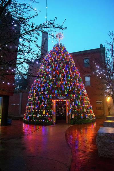 Photograph - Blue Christmas Morning - Gloucester, Ma. by Joann Vitali