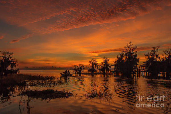 Art Print featuring the photograph Blue Cypress Sunrise With Boat by Tom Claud